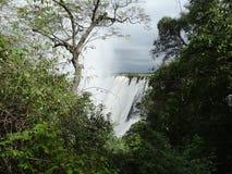 Cascada de Victoria Foto de archivo libre de regalías