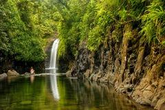 Cascada de Wainibau en el extremo del paseo costero de Lavena en Taveuni Imagenes de archivo