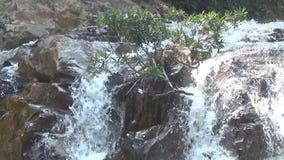 Cascada de Yang Bay, Vietnam Corrientes de arriba hacia abajo almacen de metraje de vídeo