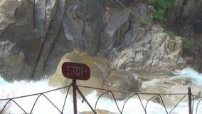 Cascada de Yang Bay Vietnam Día asoleado Rápidos de la cascada parada de la etiqueta almacen de metraje de vídeo