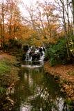 Cascada del agua de Virginia fotografía de archivo libre de regalías
