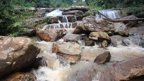 Cascada del agua dulce almacen de metraje de vídeo