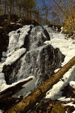 Cascada del arroyo del rugido Imagen de archivo libre de regalías
