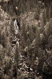 Cascada del bosque de la sepia Imágenes de archivo libres de regalías