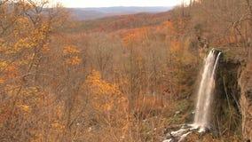 Cascada del bosque del otoño almacen de video