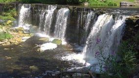 Cascada del bosque en el río de Keila metrajes