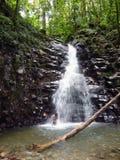 Cascada del Caribe de la selva tropical foto de archivo