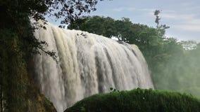 Cascada del elefante en el lat de DA, Vietnam almacen de video