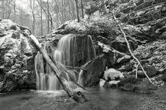 Cascada del invierno después de nevadas Foto de archivo libre de regalías