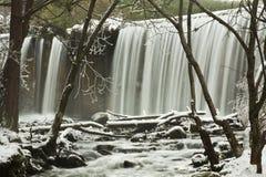 Cascada del invierno en bosque Fotos de archivo libres de regalías