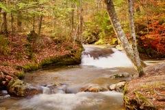 Cascada del otoño Imágenes de archivo libres de regalías