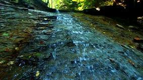Cascada del parque de estado de las sombras almacen de video