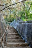Cascada del parque en otoño Fotografía de archivo