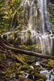 Cascada del poder que conecta en cascada sobre rocas cubiertas de musgo en la puesta del sol Fotos de archivo libres de regalías