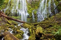 Cascada del poder que conecta en cascada sobre rocas cubiertas de musgo en la puesta del sol Fotos de archivo