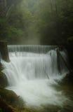 Cascada en bosque brumoso Fotos de archivo libres de regalías