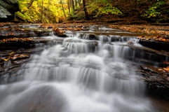 Cascada en bosque del otoño fotos de archivo