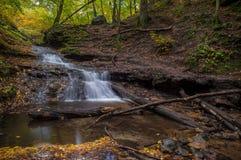 Cascada en bosque del otoño Imagenes de archivo