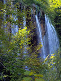 Cascada en bosque. Lagos Plitvice, Croacia. Fotos de archivo libres de regalías