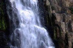 Cascada en bosque profundo en el parque nacional Fotos de archivo libres de regalías