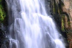 Cascada en bosque profundo en el parque nacional Fotografía de archivo libre de regalías
