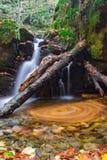 Cascada en Bulgaria, montaña de Strandzha Imágenes de archivo libres de regalías