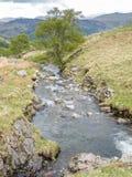 Cascada en campo en Inglaterra Fotografía de archivo
