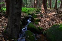 Cascada en cr Imagenes de archivo