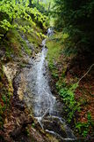 Cascada en el bosque Foto de archivo