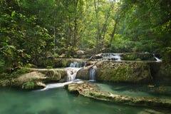 Cascada en el bosque Imagen de archivo