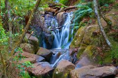 Cascada en el Dandenongs foto de archivo libre de regalías