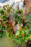 Cascada en el jardín Imágenes de archivo libres de regalías
