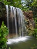 Cascada en el jardín botánico Foto de archivo libre de regalías