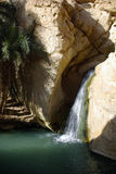 Cascada en el oasis Chebika de la montaña fotos de archivo libres de regalías