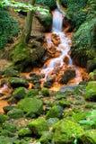 Cascada en el otoño, hojas coloridas en la tierra