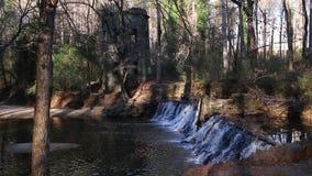 Cascada en el parque de Lullwater, Atlanta, los E.E.U.U. almacen de video
