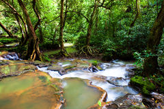 Cascada en el parque nacional Foto de archivo libre de regalías