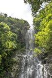 Cascada en el parque nacional de Haleakala, Maui, Hawaii Foto de archivo libre de regalías