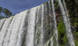 Cascada en el parque nacional de Iguazu Foto de archivo libre de regalías