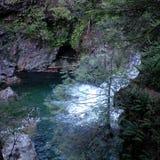 Cascada en el parque regional del río de Capilano foto de archivo libre de regalías