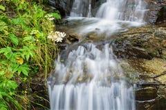 Cascada en el río de la montaña Fotos de archivo libres de regalías