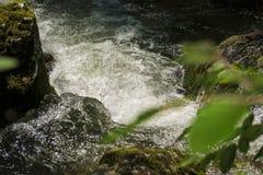 Cascada en el río de la montaña Fotos de archivo