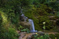 Cascada en el río de la montaña Foto de archivo