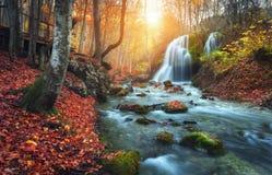 Cascada en el río de la montaña en bosque del otoño en la puesta del sol imágenes de archivo libres de regalías