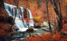 Cascada en el río de la montaña en bosque del otoño en la puesta del sol fotos de archivo
