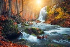 Cascada en el río de la montaña en bosque del otoño en la puesta del sol foto de archivo libre de regalías