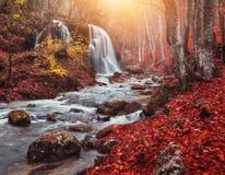 Cascada en el río de la montaña en bosque del otoño en la puesta del sol fotos de archivo libres de regalías