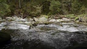 Cascada en frío del invierno con hielo y nieve almacen de metraje de vídeo