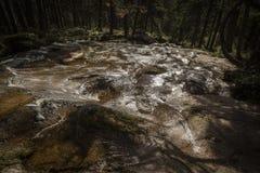 Cascada en Glen Feshie en el parque nacional de Cairngorms Foto de archivo libre de regalías