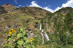 Cascada en Himalaya Imagen de archivo